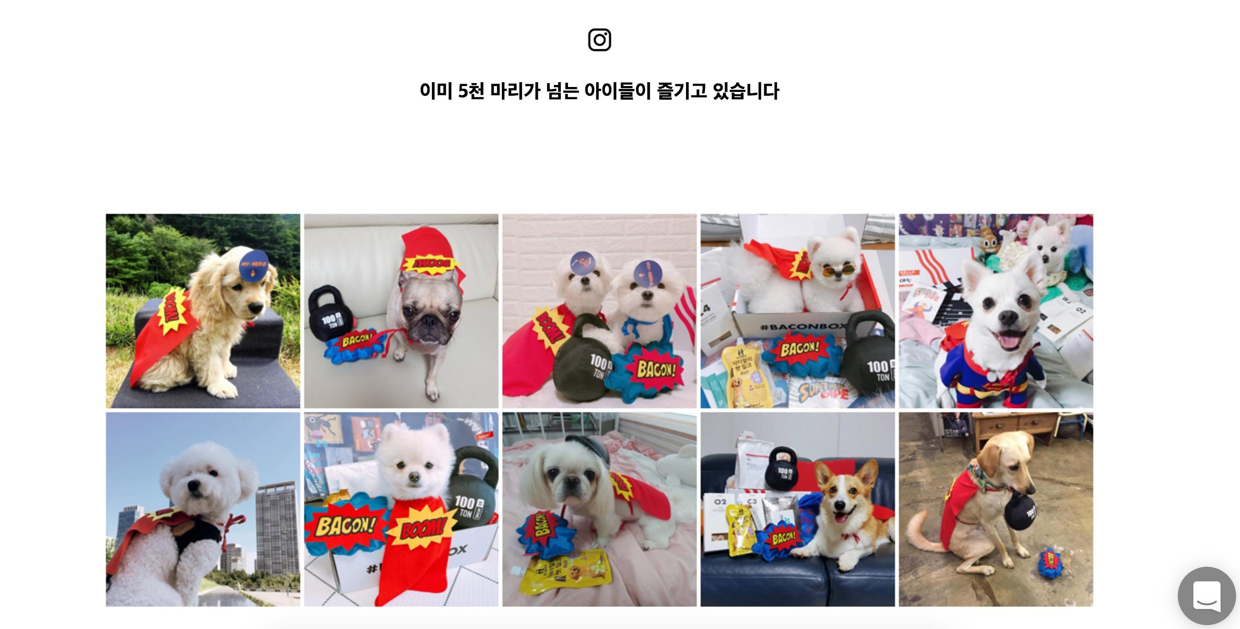 워드프레스 쇼핑몰 사례-코드엠샵-정기결제-베이컨박스-우커머스사례-4